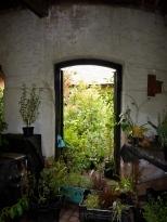 green though doorway