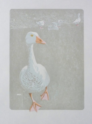 White goose with 4 colours