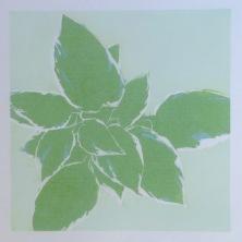 Colour 3 - Green